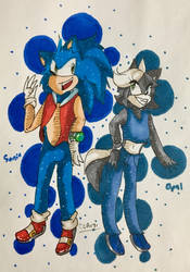 Partners (OC+Sonic) :Gift: by CharCharRose131