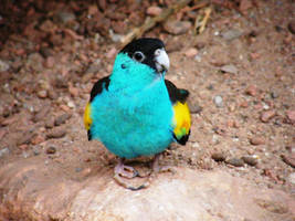 Small Blue Bird by Reillyington86