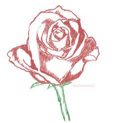 The Rose 2 by Badewanne13