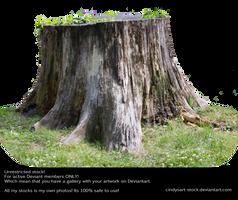 Stump 3 by cindysart-stock by CindysArt-Stock
