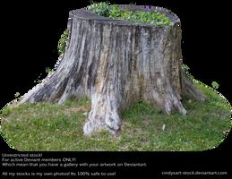 Stump 4 by cindysart-stock by CindysArt-Stock