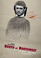 North by Nothwest Movie Poster by TheMadmind