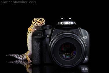 The Photographer Mk II by Alannah-Hawker