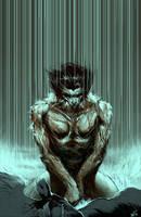 Wolverine - 08 by jeffsimpsonkh