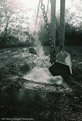 Swings in Motion by Shawn-1987