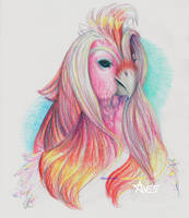 portrait of a pink bird by AviianStudios