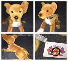 Douglas Medium Floppy Dogs- Dunkin Yellow Lab Mix by Disney1123