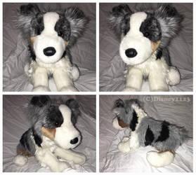 Douglas Medium Floppy Dogs- Driver Aussie by Disney1123