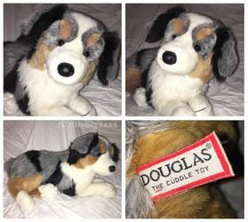 Douglas Cuddle Toys- Outback Australian Shepherd by Disney1123