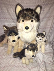 Douglas Cuddle Toys- Wolf Pack by Disney1123