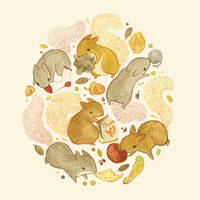 Things Squirrels Probably Shouldn't Be Eating by teaganwhite