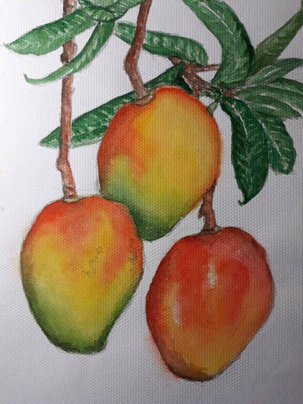 mango by idontcareqp