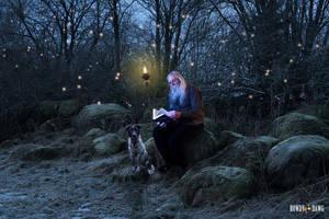 Magic Forest Retreat by Rowdy-Dawg