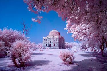Sheesh Gumbad Infrared Photo by nimitnigam