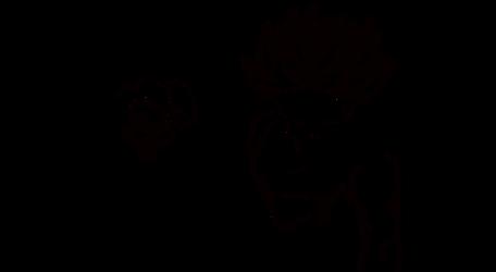 01 Lineart - Teen Goten and Trunks Ssj by keikuro