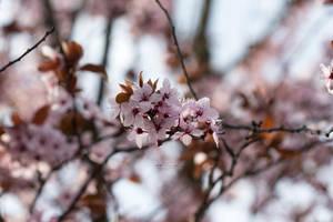 Deep Breaths by Hazel-Photography