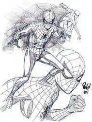 WEB HEAD by Wieringo