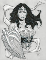 Wonder Woman ECCC 2014 by MichaelDooney