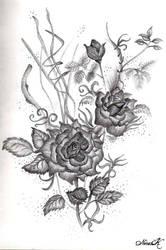 Roses by adornor