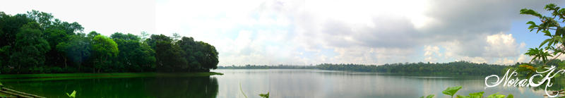 the secret zoo lake by adornor