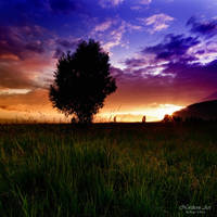 Alone in the sunset by Zx20