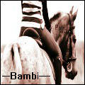 Basil #1 - Bambi! - Howrse by RowansRuins