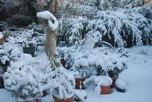 Garden Winter Scene by moonhare77