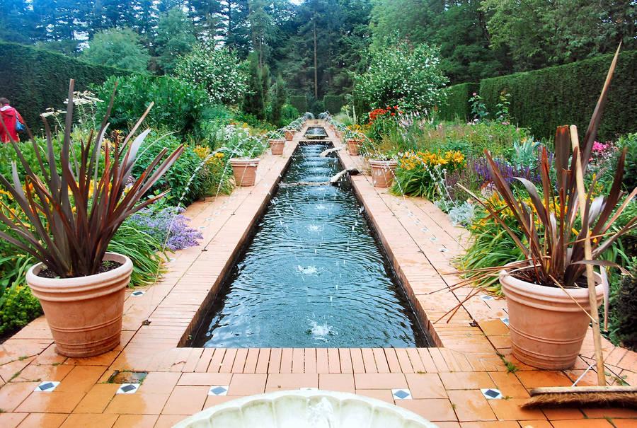 Water Garden by moonhare77
