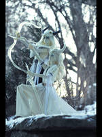 winter guards ( SoOm Heliot MD x2 ) by NogiSan