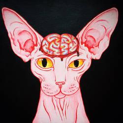 Sphynx Brains by kaleidoscopickle
