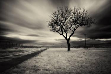 Light is everywhere by AntonioAndrosiglio
