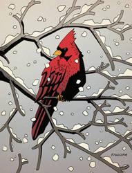 Snow Bird by ChrisFaccone