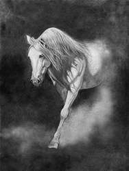 White Horse by katreeona