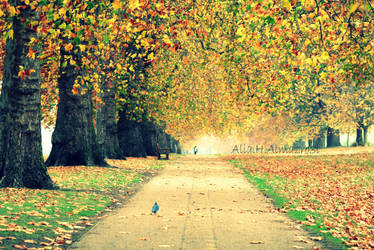 Hyde Park London by 3LooYaH