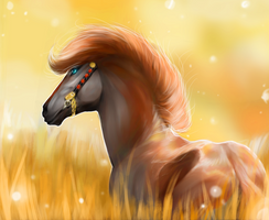 Fields of Gold (gift) by Myval-miki
