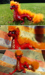 Chinese Dragon by KeruriDerago