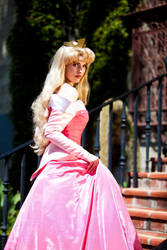 Cosplay: The Palace Steps by Adella