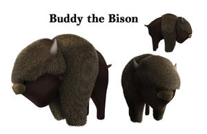 Buddy the Bison by chanmeleon