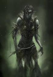Elf Character- Shin Female by chanmeleon