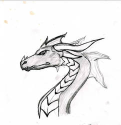 Serious Dragon by Shomakid123
