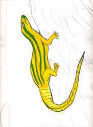 Lizard by Shomakid123