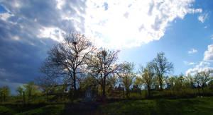 sunny grave by vladmacaru
