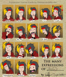 Expression Meme by Digital-Banshee