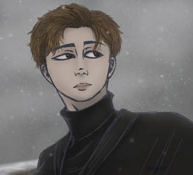Snow by sulgao