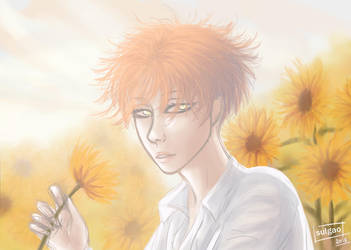 Sunflower by sulgao