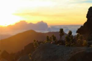 Haleakala Sunrise by CodeSRC