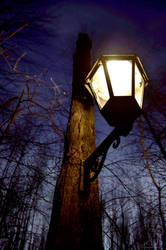 The  Lantern by Aliuh