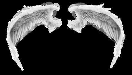 wings 3 by RomanticFae