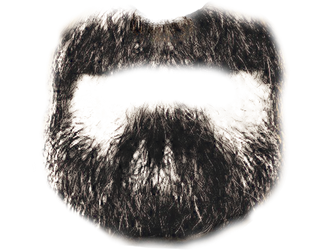 beard by Bigburgy