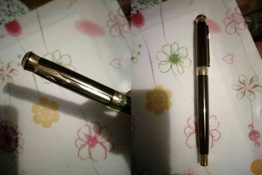 My new awesome fountain pen by HomicidalThoughts